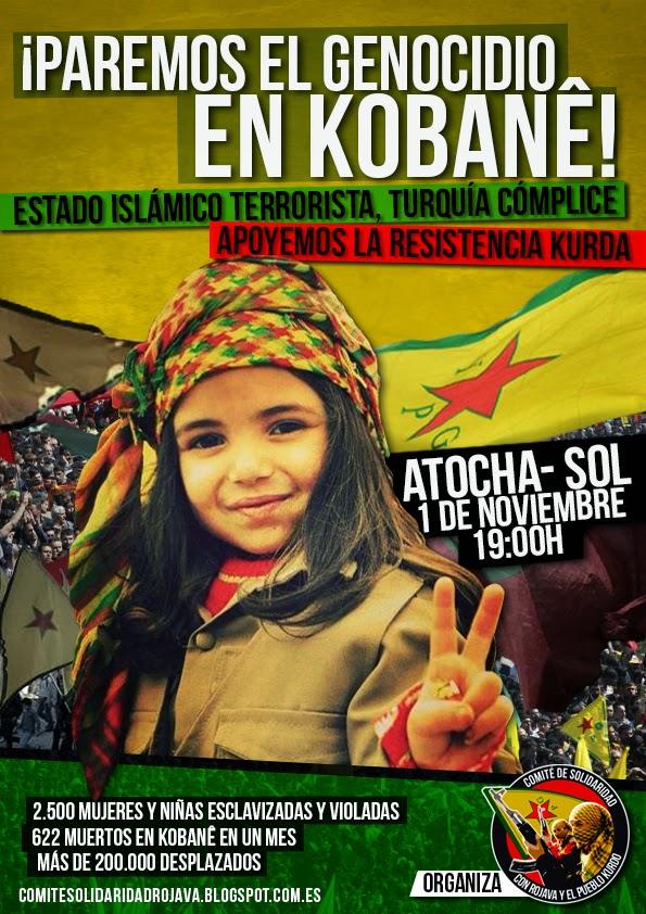 http://comitesolidaridadrojava.blogspot.com.es/2014/10/manifestacion-paremos-el-genocidio-en.html